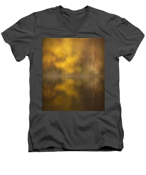Abstract Birch Reflections Men's V-Neck T-Shirt
