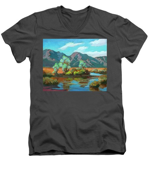 After The Rain Men's V-Neck T-Shirt by Diane McClary