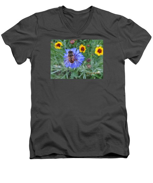 Men's V-Neck T-Shirt featuring the photograph Afternoon Feeding by Tina M Wenger