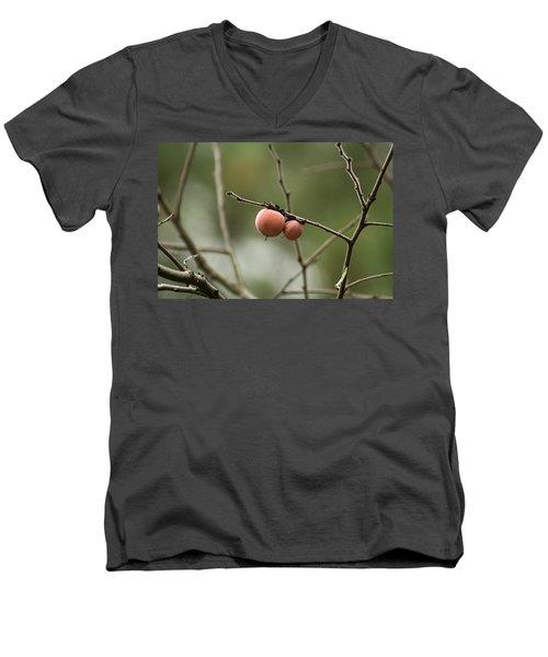 Alabama Wild Persimmons Men's V-Neck T-Shirt