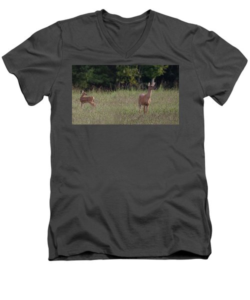 Alert Doe And Fawn Men's V-Neck T-Shirt