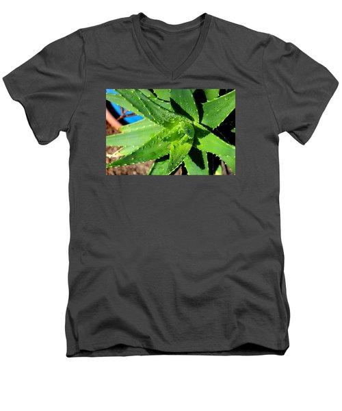 Aloe Men's V-Neck T-Shirt by M Diane Bonaparte