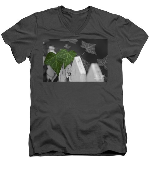 Along The Fence Men's V-Neck T-Shirt