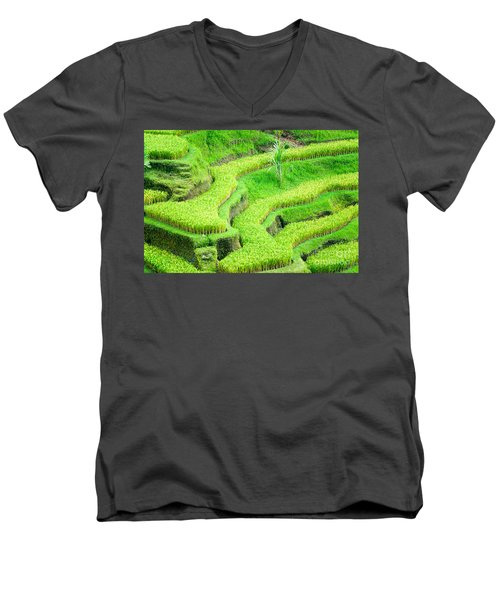 Men's V-Neck T-Shirt featuring the photograph Amazing Rice Terrace Field by Luciano Mortula