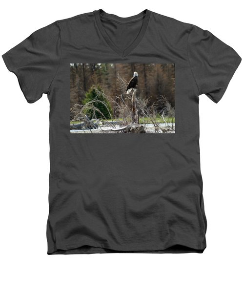 Men's V-Neck T-Shirt featuring the photograph American Eagle On Snake River by Living Color Photography Lorraine Lynch