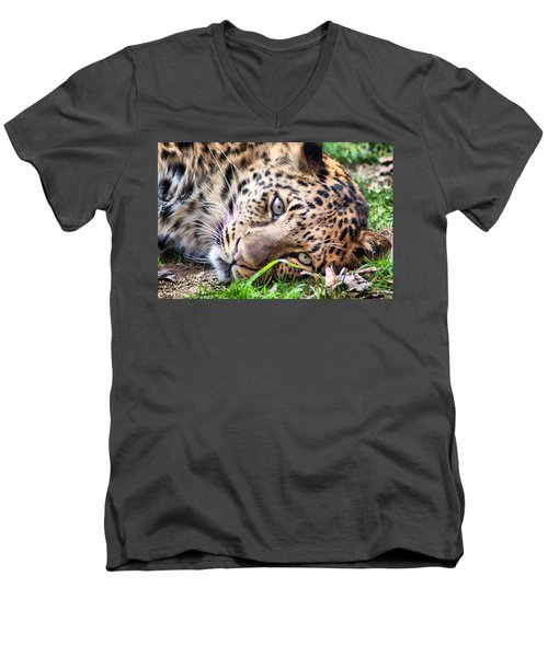 Men's V-Neck T-Shirt featuring the photograph Amur Leopard by Lynne Jenkins