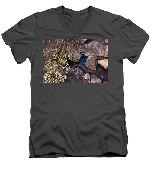 Another World IIi Men's V-Neck T-Shirt