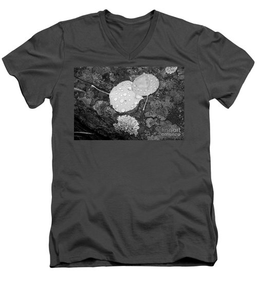 Aspen Leaves In The Rain Men's V-Neck T-Shirt