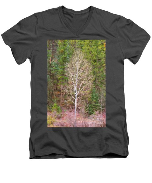 Aspen Tree Forest Road 249 Men's V-Neck T-Shirt