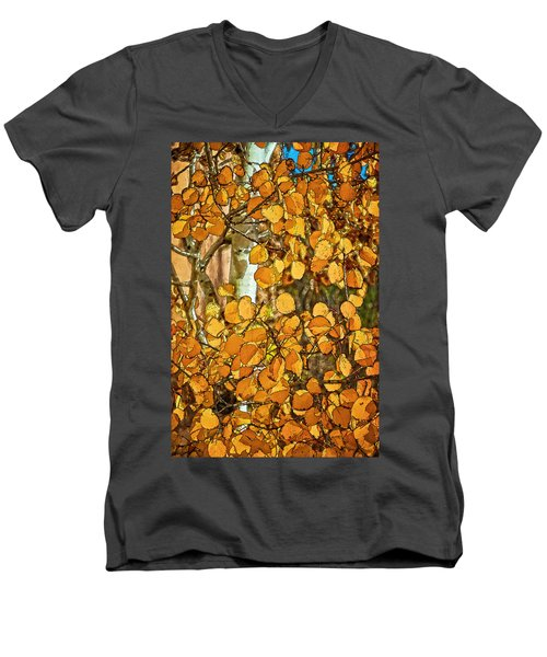 Aspens Gold Men's V-Neck T-Shirt
