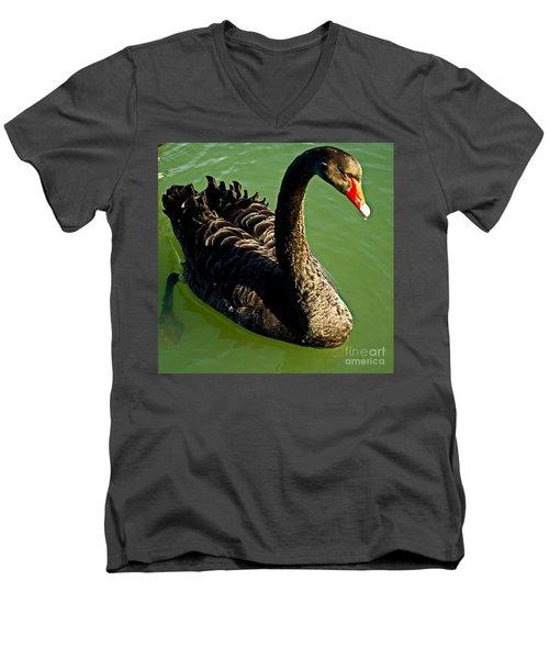 Australian Black Swan Men's V-Neck T-Shirt