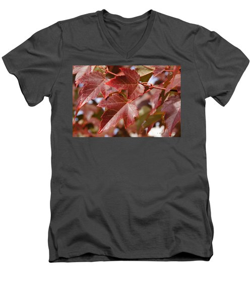 Men's V-Neck T-Shirt featuring the photograph Autumn In My Back Yard by Mick Anderson