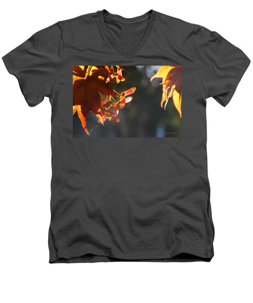 Men's V-Neck T-Shirt featuring the photograph Autumn Maple by Mick Anderson