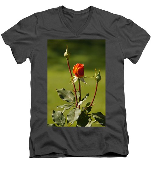 Men's V-Neck T-Shirt featuring the photograph Autumn Rose by Mick Anderson