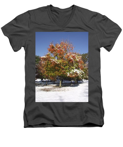 Autumn Snow Men's V-Neck T-Shirt