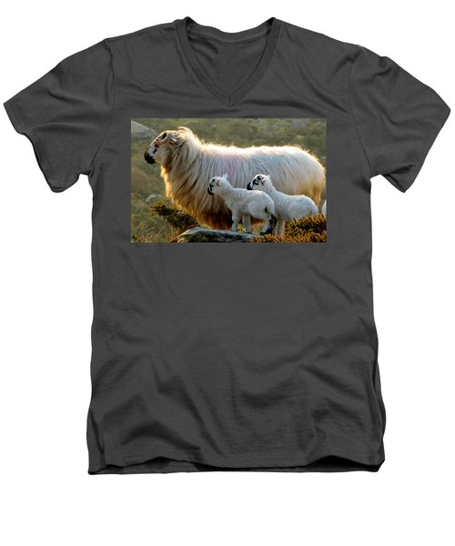 Baby-lambs Men's V-Neck T-Shirt by Barbara Walsh