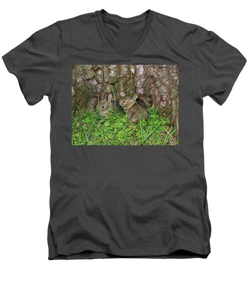 Baby Rabbits Men's V-Neck T-Shirt