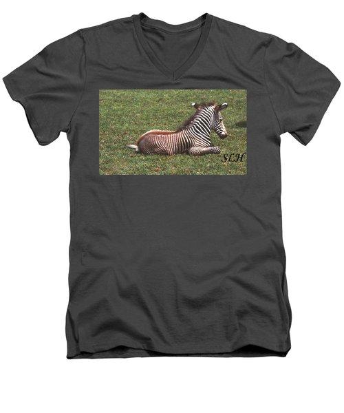 Baby Zebra Men's V-Neck T-Shirt