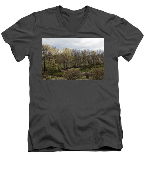 Back Yard Men's V-Neck T-Shirt