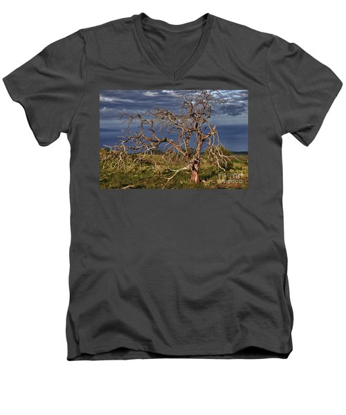 Bare Tree In Hana Maui Men's V-Neck T-Shirt by Loriannah Hespe
