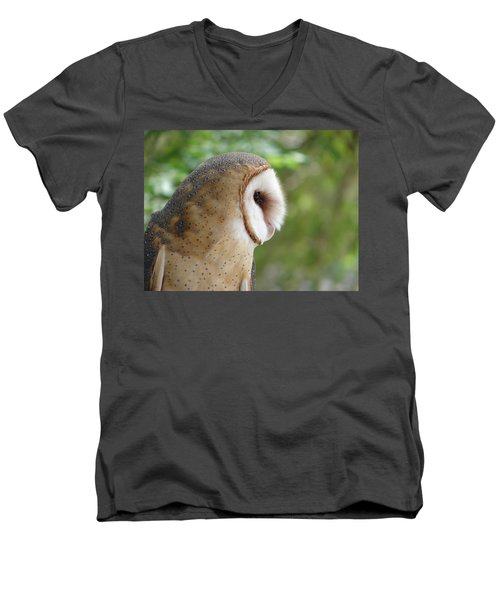 Barn Owl Men's V-Neck T-Shirt by Randy J Heath