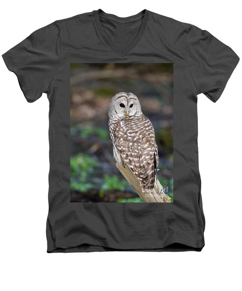 Men's V-Neck T-Shirt featuring the photograph Barred Owl by Les Palenik