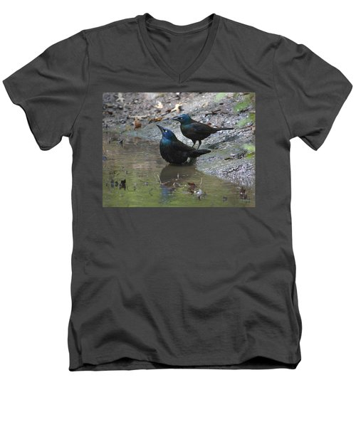 Bathing Partners Men's V-Neck T-Shirt