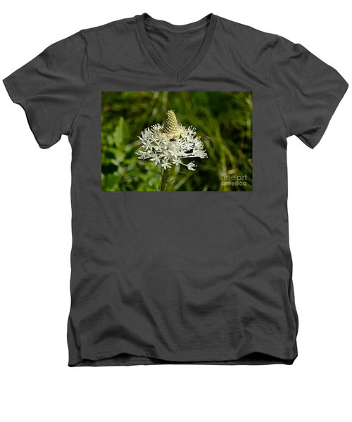Beargrass Men's V-Neck T-Shirt