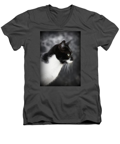 Beautiful Kitty Men's V-Neck T-Shirt by Paul  Wilford