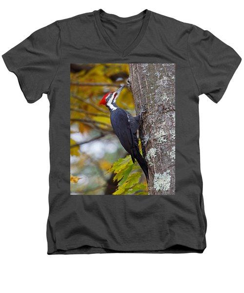 Beautiful Pileated Woodpecker Men's V-Neck T-Shirt