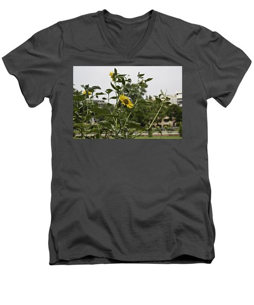 Men's V-Neck T-Shirt featuring the photograph Beautiful Yellow Flower In A Garden by Ashish Agarwal