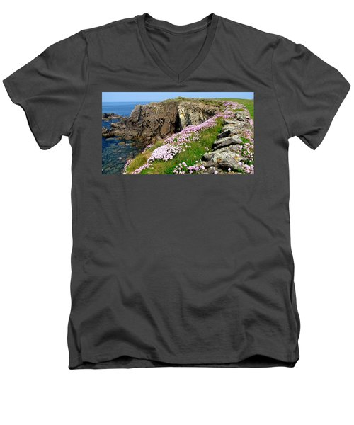 Beauty In Kerry Men's V-Neck T-Shirt