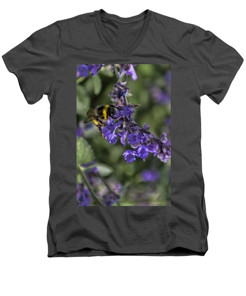 Men's V-Neck T-Shirt featuring the photograph Bee by David Gleeson