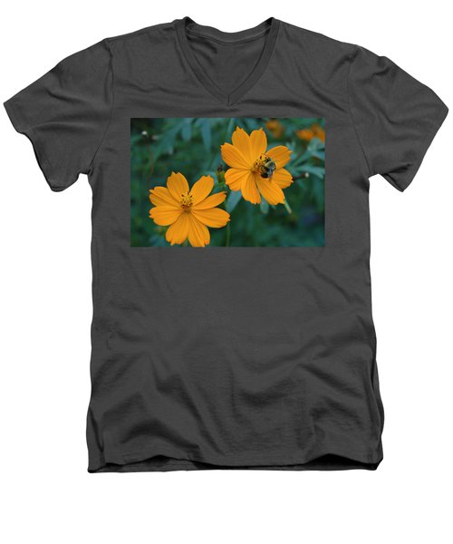 Men's V-Neck T-Shirt featuring the photograph Bee On Cosmos Flower  by Tom Wurl