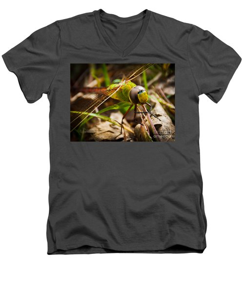 Men's V-Neck T-Shirt featuring the photograph Big Brown Eyes by Cheryl Baxter