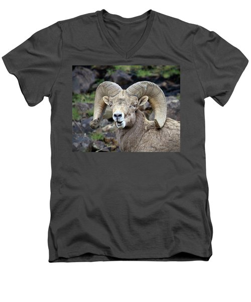 Men's V-Neck T-Shirt featuring the photograph Bighorn Giant by Steve McKinzie