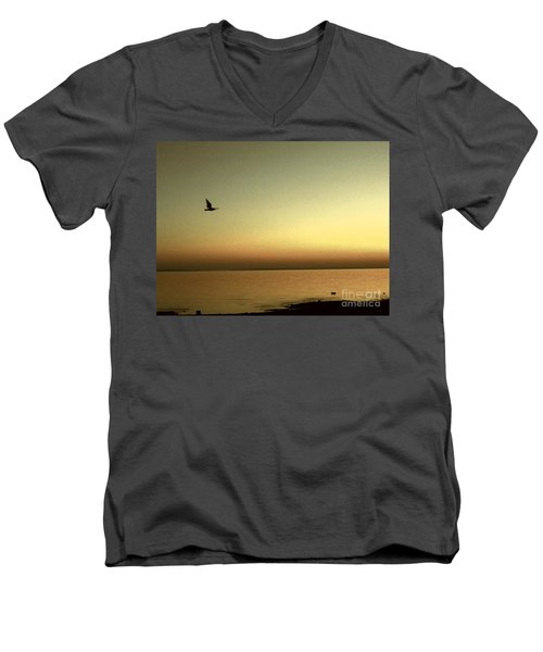 Bird At Sunrise - Sepia Men's V-Neck T-Shirt by Desiree Paquette