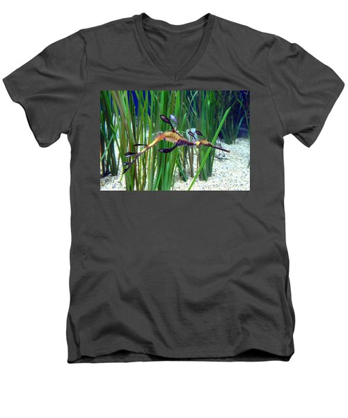 Men's V-Neck T-Shirt featuring the photograph Black Dragon Seahorse by Carla Parris