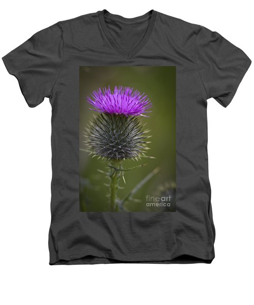 Blooming Thistle Men's V-Neck T-Shirt by Clare Bambers