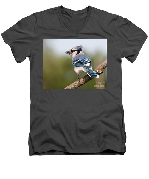 Men's V-Neck T-Shirt featuring the photograph Blue Jay by Art Whitton