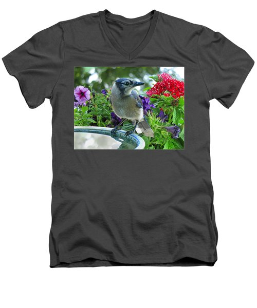Men's V-Neck T-Shirt featuring the photograph Blue Jay At Water by Debbie Portwood