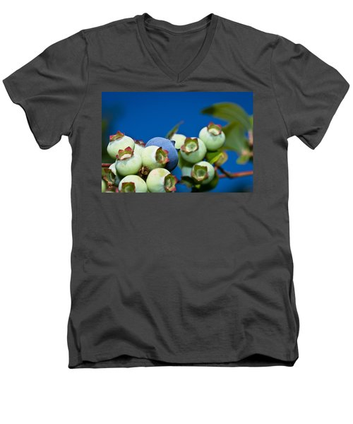 Blueberries And Sky Men's V-Neck T-Shirt