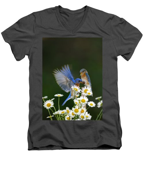 Men's V-Neck T-Shirt featuring the photograph Bluebirds Picnicking In The Daisies by Randall Branham