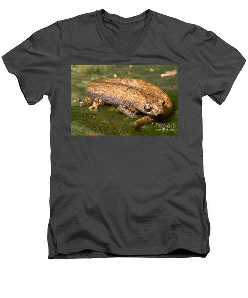 Bolitoglossine Salamander Men's V-Neck T-Shirt by Dante Fenolio