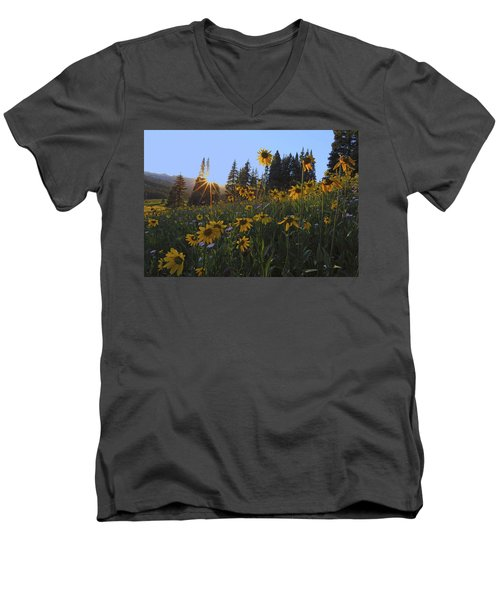 Boreas Pass Men's V-Neck T-Shirt