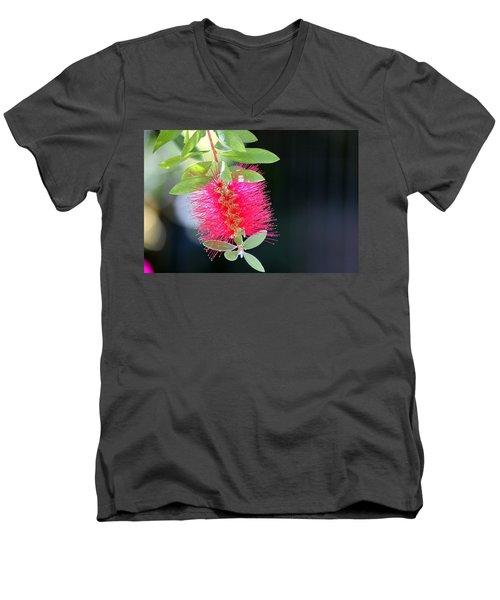 Bottlebrush Nectar Men's V-Neck T-Shirt