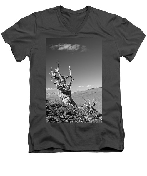 Bristlecone Pine And Cloud Men's V-Neck T-Shirt