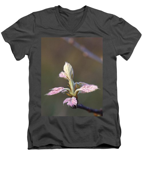 Budding Oak Leaves Men's V-Neck T-Shirt