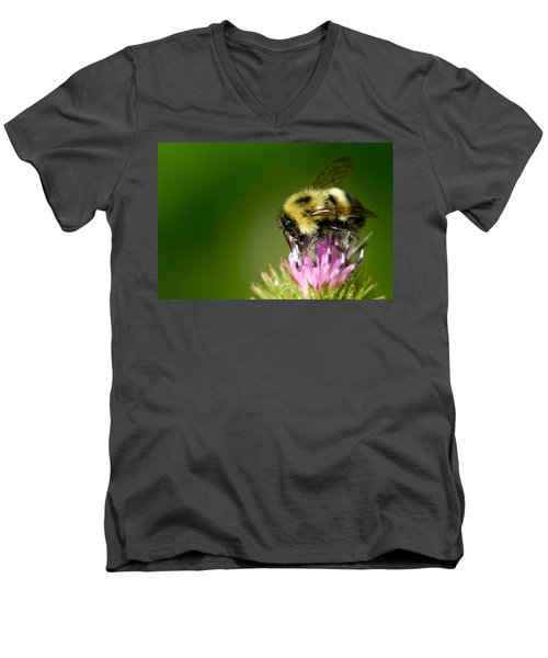 Busy Bee Men's V-Neck T-Shirt