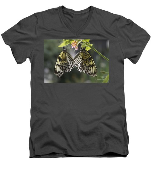Butterfly Duo Men's V-Neck T-Shirt